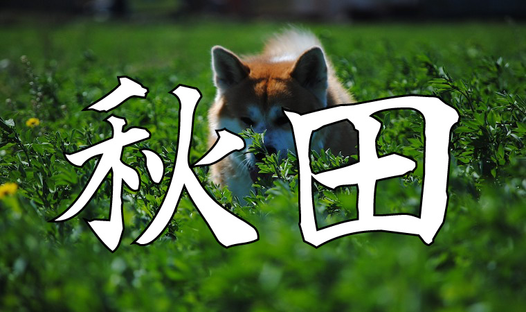 amazonギフト券 買取 秋田
